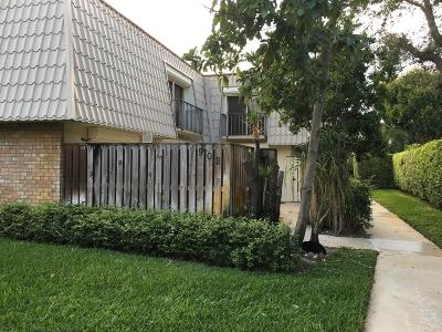 West Palm Beach Rental For Rent: 1700 Embassy Drive #902
