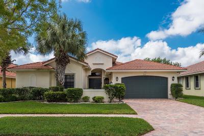 Boynton Beach Single Family Home For Sale: 7019 Antinori Lane