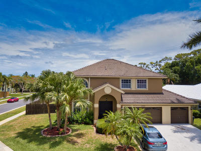 Boynton Beach Single Family Home For Sale: 9095 Indian River Run