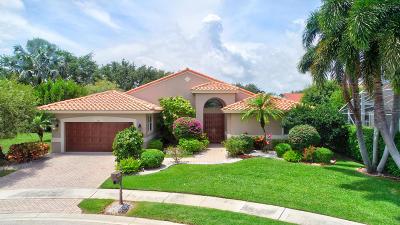 Boynton Beach Single Family Home For Sale: 6615 E Liseron