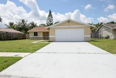 Boynton Beach Single Family Home For Sale: 5114 Mark Drive