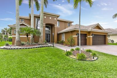 Parkland Single Family Home For Sale: 10902 NW 70th Court