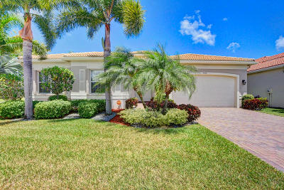 Boynton Beach Single Family Home For Sale: 9579 Dovetree Isle Drive