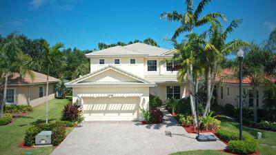 Palm Beach Gardens Single Family Home For Sale: 12085 Aviles Circle