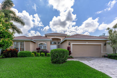 Delray Beach Single Family Home For Sale: 13840 Via Torino