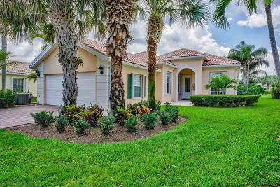 Palm Beach Gardens Single Family Home For Sale: 1353 Saint Lawrence Drive