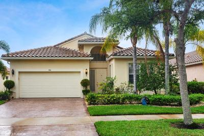 Port Saint Lucie Single Family Home For Sale: 384 NW Springview Loop