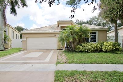 Lake Worth Single Family Home For Sale: 7216 Copperfield Circle