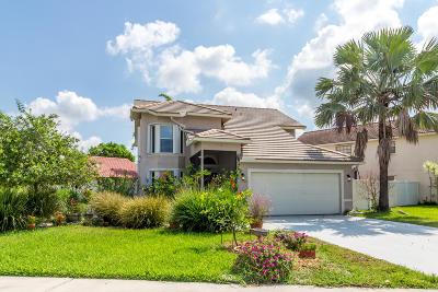 Boca Raton Single Family Home For Sale: 10369 Islander Drive