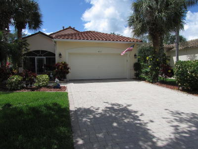 Port Saint Lucie Single Family Home For Sale: 453 NW Lismore Lane