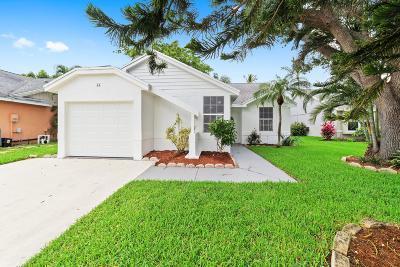 Boynton Beach Single Family Home Contingent: 44 Misty Meadow Drive