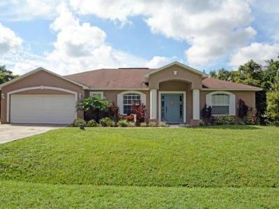 Port Saint Lucie Single Family Home For Sale: 1038 SW Placetas Avenue