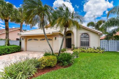 Boynton Beach Single Family Home For Sale: 176 Executive Circle
