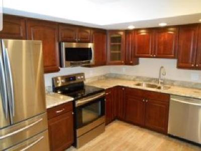 Lake Worth Condo For Sale: 4500 Gefion Court #303