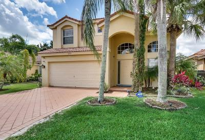 Wellington Single Family Home For Sale: 3772 Miramontes Circle