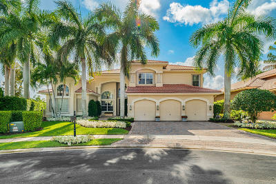 Boca Raton Single Family Home For Sale: 19196 Natures View Court