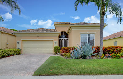 Delray Beach Single Family Home For Sale: 7059 Demedici Circle