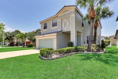 Wellington Single Family Home For Sale: 9821 Scribner Lane