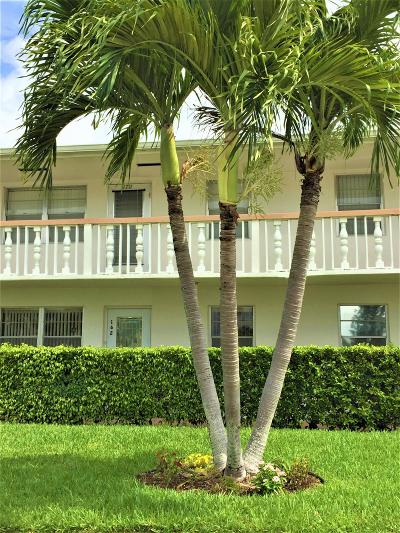 West Palm Beach Condo For Sale: 162 Berkshire H