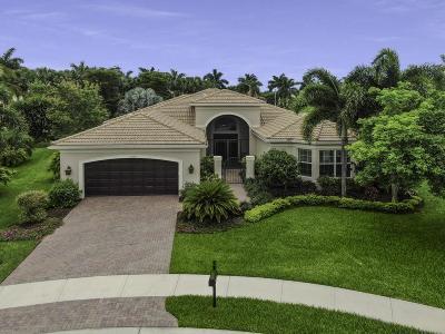 Boynton Beach Single Family Home For Sale: 10504 Whitewind Circle