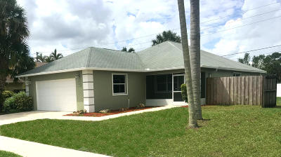 Jupiter Single Family Home For Sale: 197 Wandering Trail