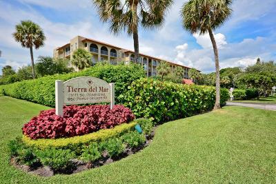 Boca Raton Rental For Rent: 950 Ponce De Leon Road #111