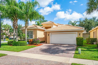 Boynton Beach Single Family Home For Sale: 7451 Twin Falls Drive