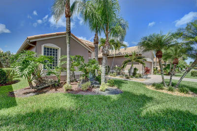 Boynton Beach Single Family Home For Sale: 6679 Catania Drive