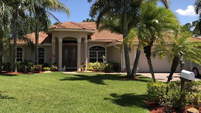 Port Saint Lucie Single Family Home For Sale: 348 SW Egret Landing(S)