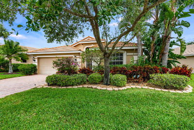 Lake Worth Single Family Home For Sale: 6761 Rienzo Street