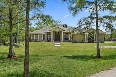 Loxahatchee Single Family Home For Sale: 2744 Deer Run Trail