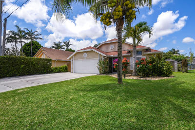 Jupiter Single Family Home For Sale: 6255 Adams Street Street