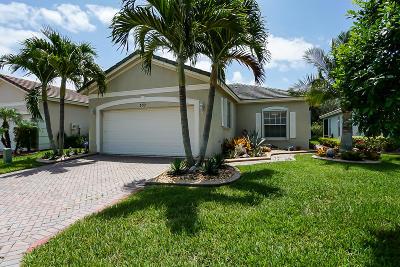 Saint Lucie West Single Family Home For Sale: 357 SW Coconut Key Way