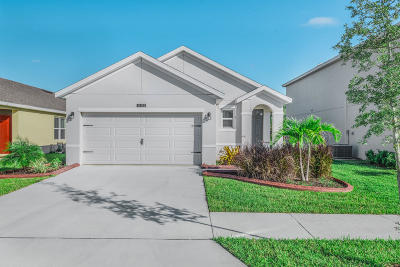 Port Saint Lucie Single Family Home For Sale: 11181 SW Sophronia Street