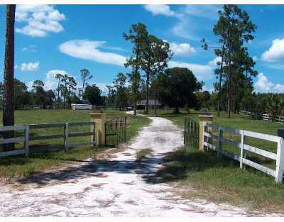 Loxahatchee Groves Single Family Home For Sale: 15897 Collecting Canal Road