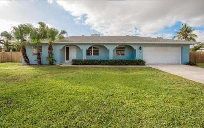 Delray Beach Single Family Home For Sale: 4268 Brandon Drive