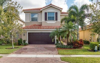Boynton Beach Single Family Home For Sale: 10556 Cape Delabra Court