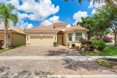 Boynton Beach Single Family Home For Sale: 10098 Mizner Falls Way