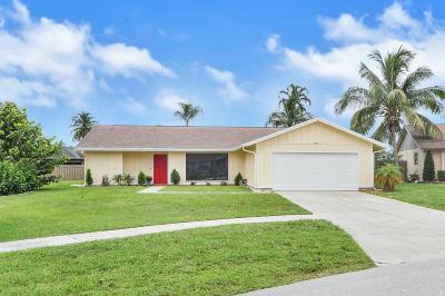 Wellington Single Family Home For Sale: 1293 Jackpine Street