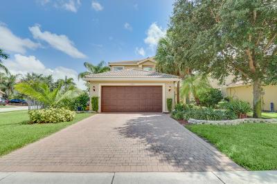 Boynton Beach Single Family Home For Sale: 7624 Jewelwood Drive