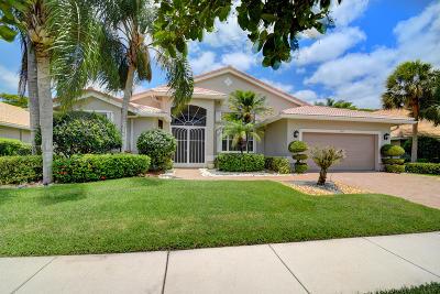 Boynton Beach Single Family Home For Sale: 7068 Falls Road E
