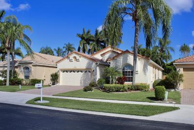 Boynton Beach Single Family Home For Sale: 6852 Camille Street