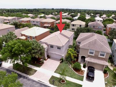 Royal Palm Beach Single Family Home For Sale: 1417 Briar Oak Drive