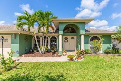 Port Saint Lucie Single Family Home For Sale: 210 Ramie Lane