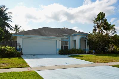 Royal Palm Beach Single Family Home Contingent: 163 Kings Way