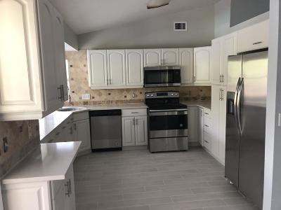 Port Saint Lucie Single Family Home For Sale: 3541 SW Dellamano Street