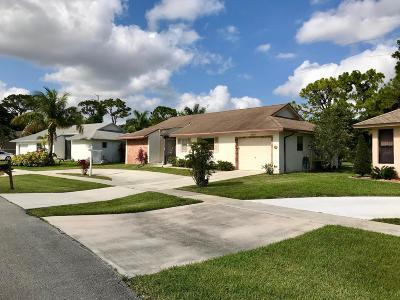 Delray Beach Single Family Home For Sale: 6056 Winding Brook Way