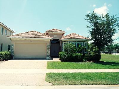 Single Family Home For Sale: 871 NW Demedici Road