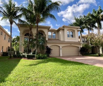 Boynton Beach Single Family Home For Sale: 8523 Skybar Lake Cove