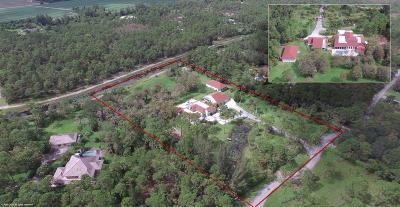 Loxahatchee Single Family Home For Sale: 1339 Stallion Drive
